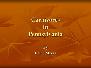 Carnivores In Pennsylvania