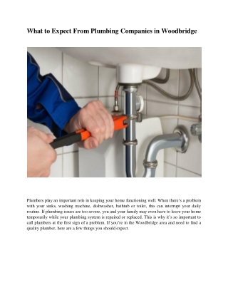 What to Expect From Plumbing Companies in Woodbridge