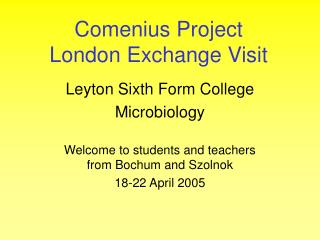 Comenius Project London Exchange Visit