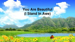 You Are Beautiful  (I Stand In Awe)