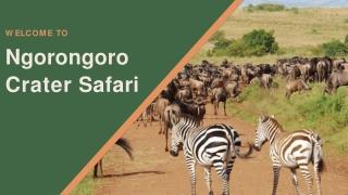 5 Days Tour to Ngorongoro Crater Safari