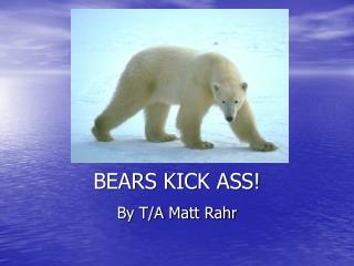 BEARS KICK ASS!