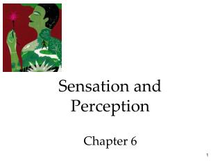 Sensation and Perception  Chapter 6