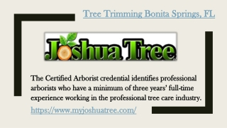 Tree Trimming Bonita Springs, FL