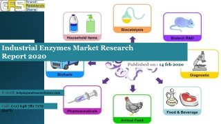 Industrial Enzymes Market Research Report 2020