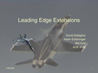 Leading Edge Extensions
