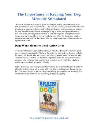 THE IMPORTANCE OF BRAIN TRAINING FOR DOGS