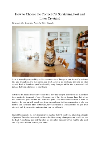 How to Choose the Correct Cat Scratching Post and Litter Crystals?