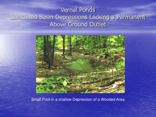 Vernal Ponds Contained Basin Depressions Lacking a Permanent Above Ground Outlet
