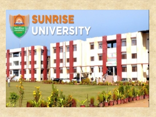 Questions You Have About Sunrise University
