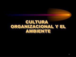 CULTURA ORGANIZACIONAL Y EL AMBIENTE
