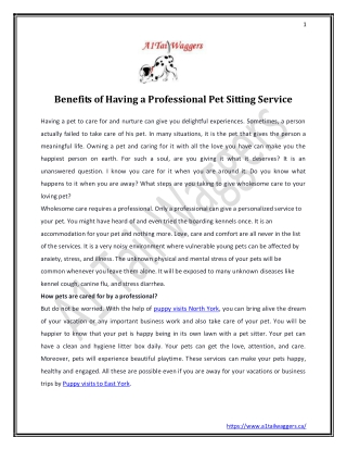 Benefits of Having a Professional Pet Sitting Service