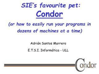 SIE's favourite pet: Condor (or how to easily  run your programs in dozens of machines at a time)