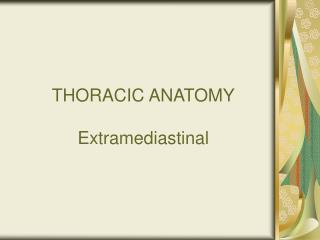 THORACIC ANATOMY Extramediastinal