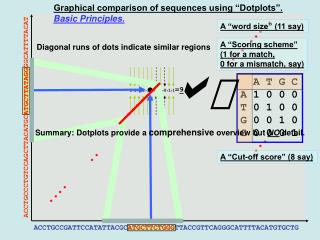 "Graphical comparison of sequences using ""Dotplots""."