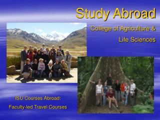 Study Abroad  College of Agriculture &  Life Sciences