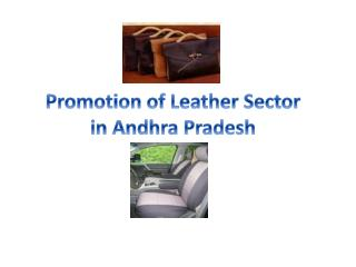 Promotion of Leather Sector  in Andhra Pradesh