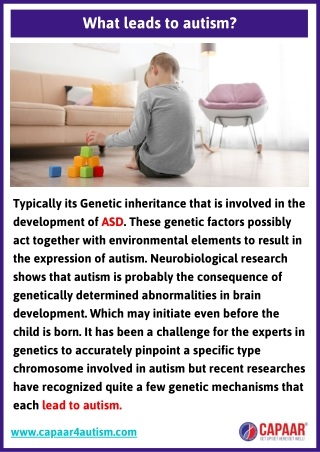 What leads to autism   Autism Treatment Near Me in Bangalore