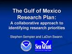 The Gulf of Mexico  Research Plan:  A collaborative approach to identifying research priorities