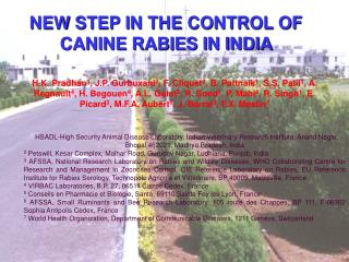NEW STEP IN THE CONTROL OF CANINE RABIES IN INDIA