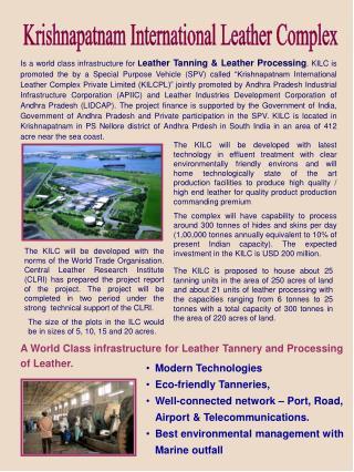 Krishnapatnam International Leather Complex