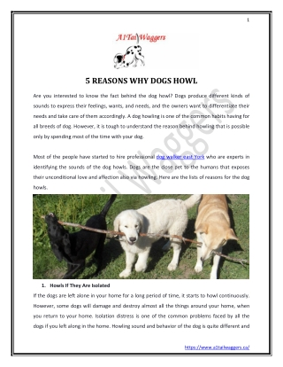 http://www.mediafire.com/file/3hnu2eoup2gg27t/5_REASONS_WHY_DOGS_HOWL.pdf/file