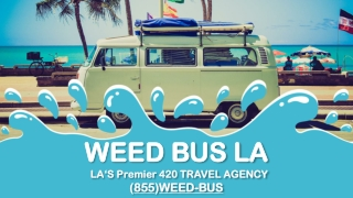 Get the Best Cannabis Tour from Professional Industry