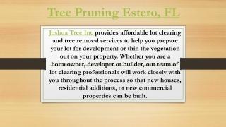 Tree Pruning Estero, FL