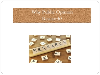 Why Public Opinion Research?