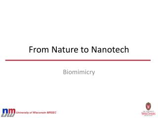 From Nature to Nanotech