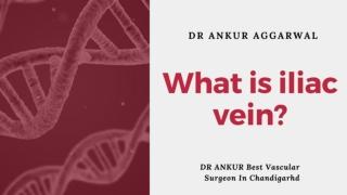 What is iliac vein