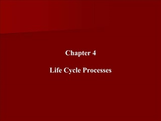 Chapter 4  Life Cycle Processes