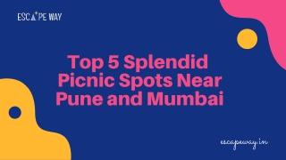 Top 5 Picnic Spots Near Pune & Mumbai