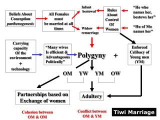Beliefs About Conception parthenogenesis