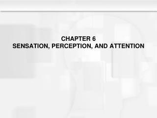 CHAPTER 6 SENSATION, PERCEPTION, AND ATTENTION