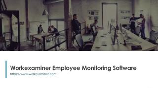 Workexaminer Employee Monitoring Software