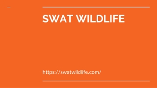 Which Wildlife Control Company Should You Hire??