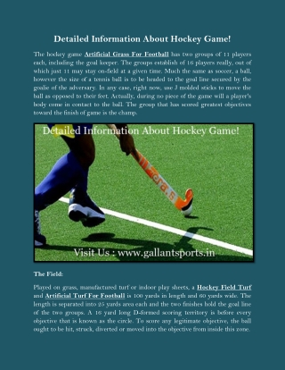 Detailed Information About Hockey Game!