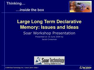 Large Long Term Declarative Memory: Issues and Ideas