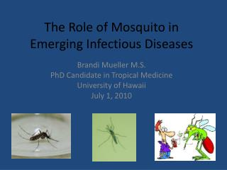 The Role of Mosquito in Emerging  I nfectious  D iseases