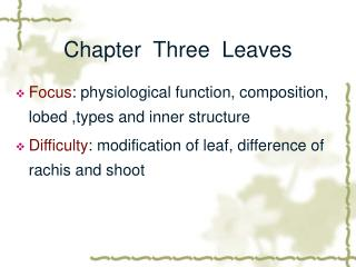 Chapter  Three  Leaves