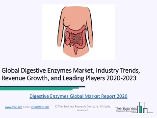 Global Digestive Enzymes Market Characteristics, Forecast Size, Trends Till 2023