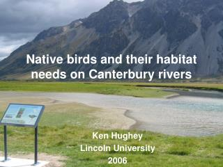 Native birds and their habitat needs on Canterbury rivers