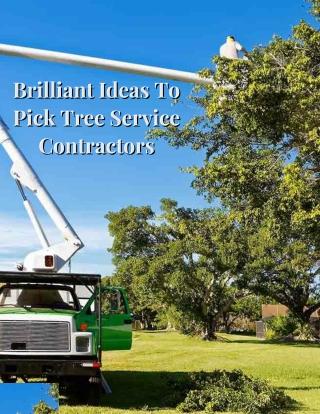 Brilliant Ideas To Pick Tree Service Contractors