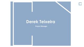 Derek Teixeira - Highly Skilled Project Manager