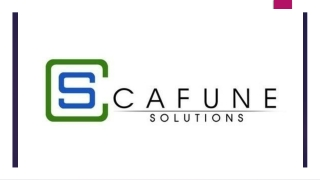 Best Social Media Optimization Services by Cafune Solutions