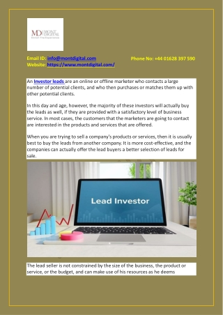 What does a lead investor do?