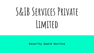 S&IB Services - Meet the Best Security Service Provider