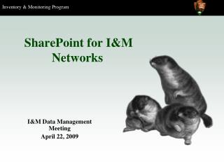 SharePoint for I&M Networks
