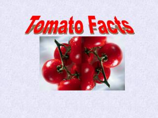 Tomato Facts